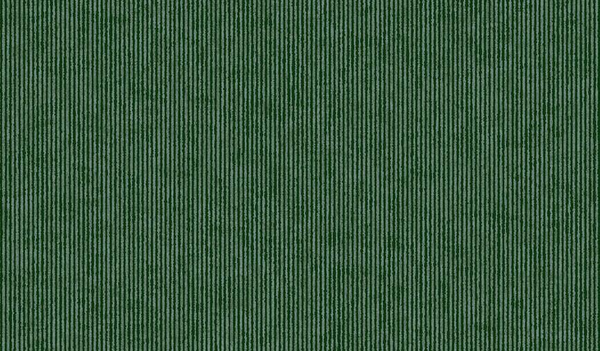 307322.jpg
