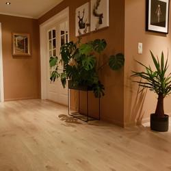 Maling og gulv fra Bengts Arendal