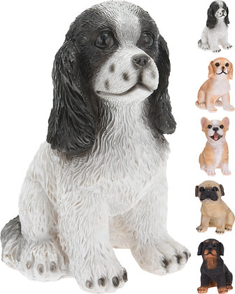Hund liten