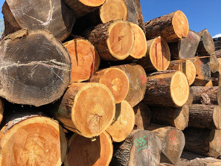 What is happening with Timber prices...?