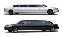 9 passenger super stretch limousine.jpg