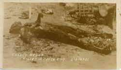 Charred remains of black man