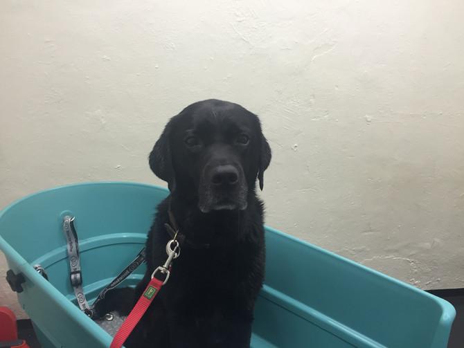 Es geht nichts über ein Bad am Samstagmorgen
