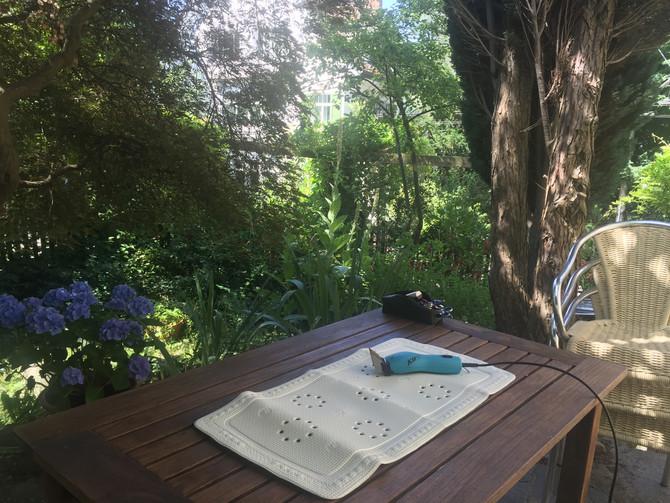 Heute frisieren wir im Garten