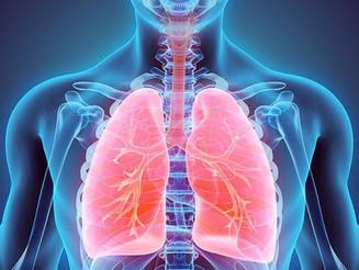 Pneumonia: Saiba mais sobre a doença e como se prevenir