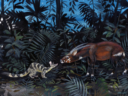 The Line in the Sand: Saola in a Broad Conservation Context