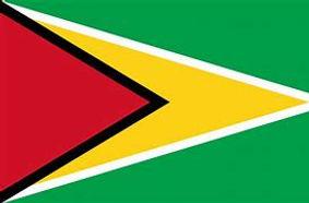 Guyana Flag.jpg