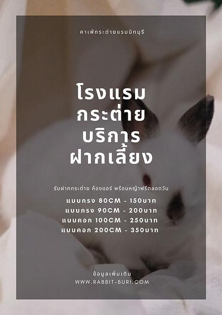 คาเฟ่กระต่ายแรบบิทบุรี.jpg