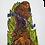 Thumbnail: Les oiseaux dans la jungle