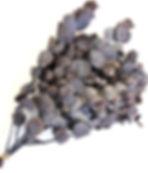 FL710-83.jpg