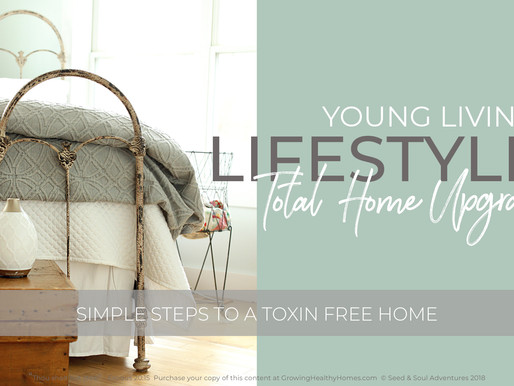 Young Living: Detox your HOME!
