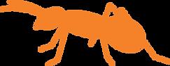 ant orange.png