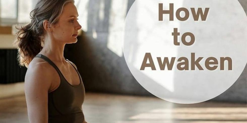 Fee Online Meditation for Beginner
