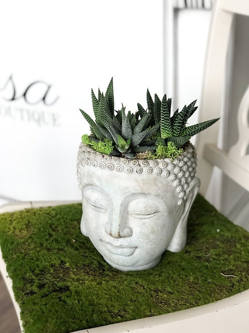 Cement Buddha Head with Succulents