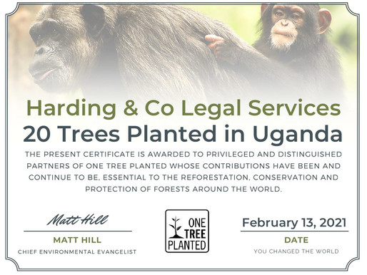 YOU have helped us plant 20 trees in Uganda!