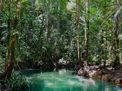 DEVELOPING PROTECTED AREAS INVESTMENT PLAN