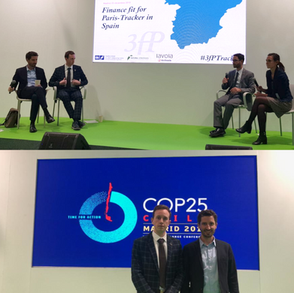 NATURAL STRATEGIES AT COP25