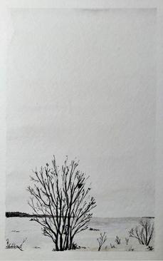 Landscapes - 8.jpg