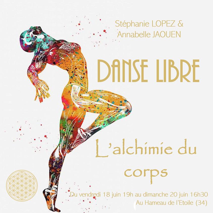 L'alchimie du corps - Stage de Danse Libre (1)