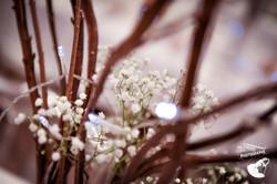 audreyversiniphotographe-9535