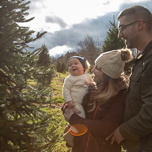 Christmas Tree Farm~The Wood Family