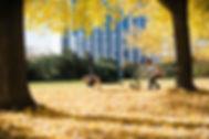 Saxonz_FotoByErikGross.jpg