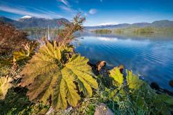 CHILE_In_den_Fjorden_Patagoniens