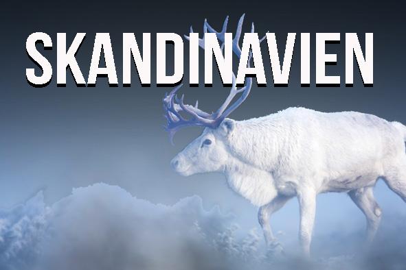 Start_Skandinavien