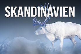 Start_Skandinavien.jpg