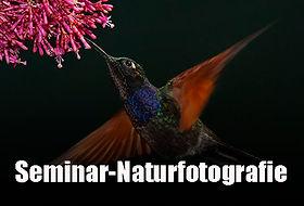 Naturfotografie.jpg