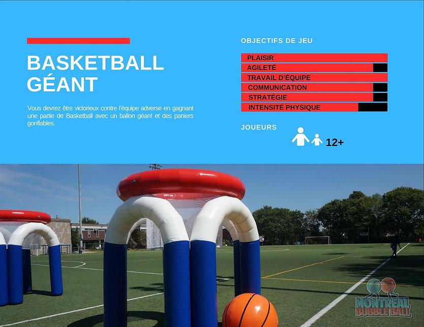 Basketball Geant.jpg