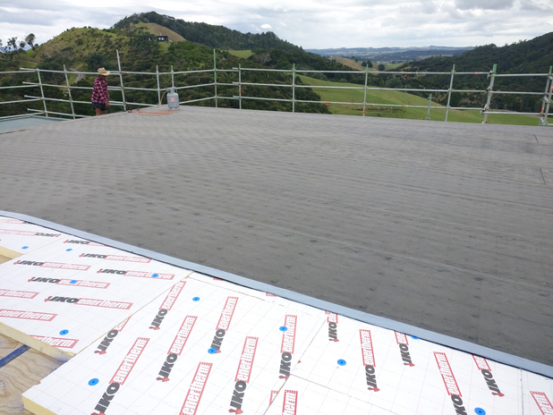 Breamtail House Roof