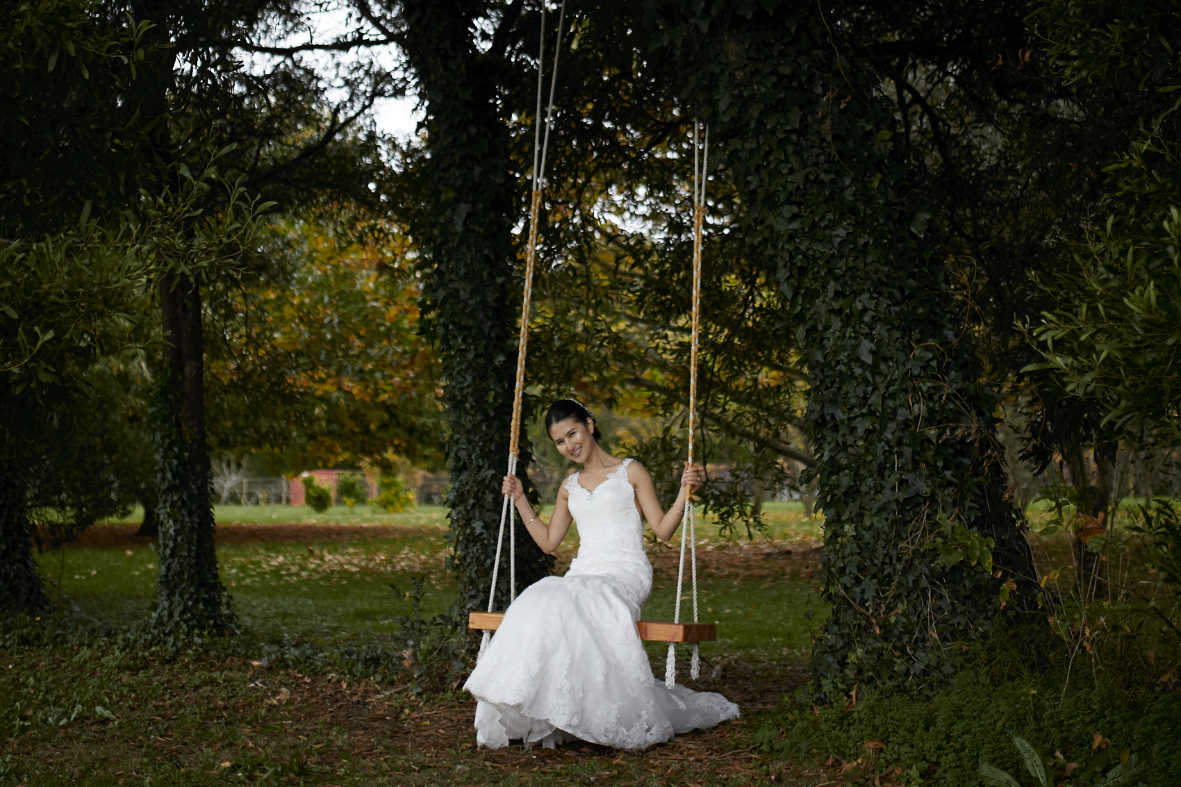 Gorgeous bride on swing