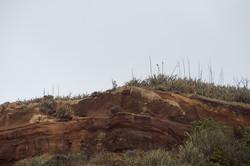 Kid on cliff