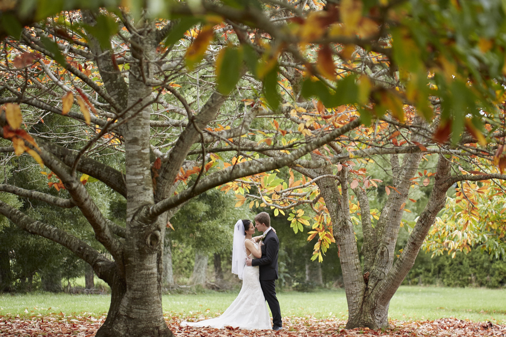 Wedding amongst autumn tree