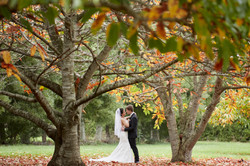 Wedding amongst autumn tree