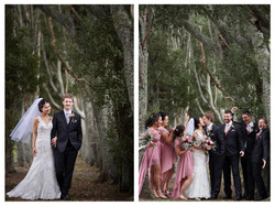 Sunning wedding backdrop