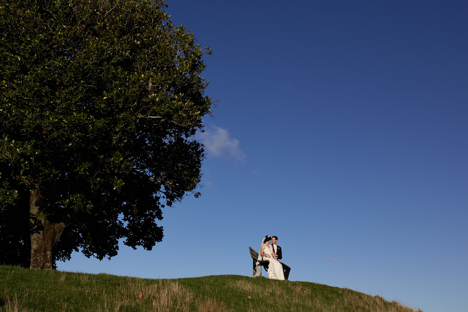 Bride and groom sitting under tree