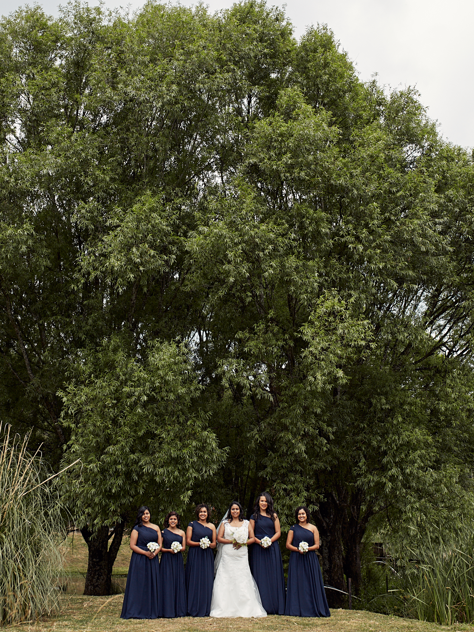 Wedding photography West Auckland