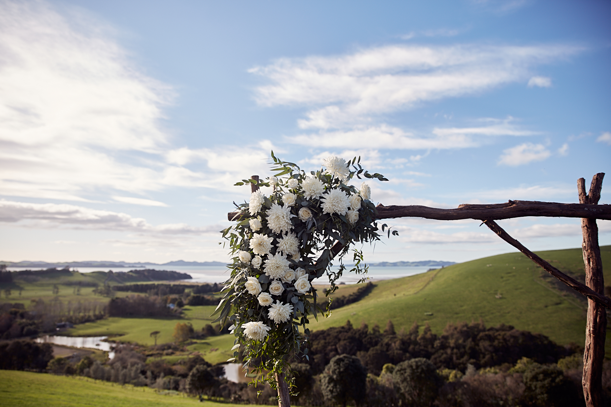 The flowers at Kauri Bay Boomrock