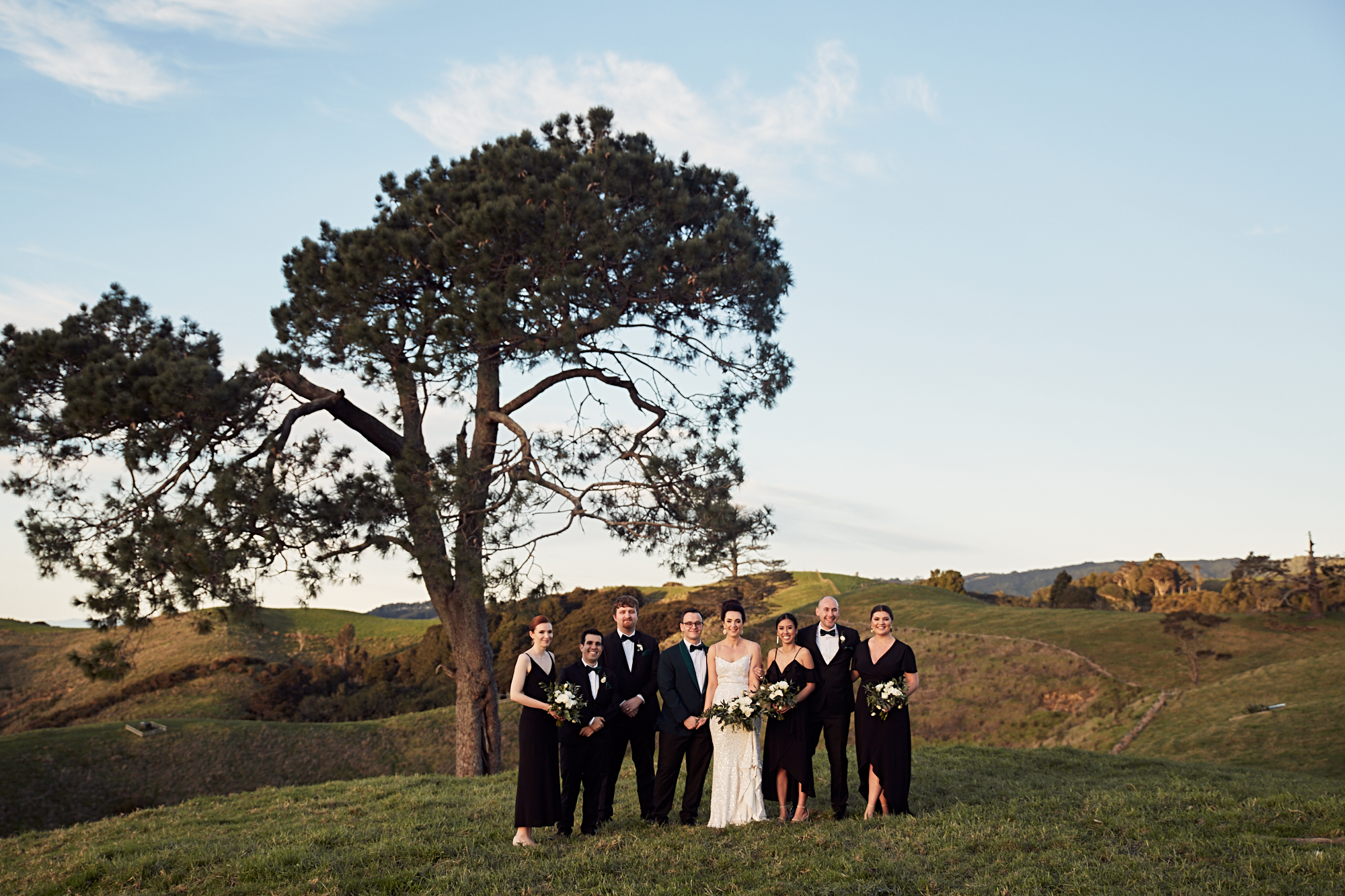 Bridal party in field