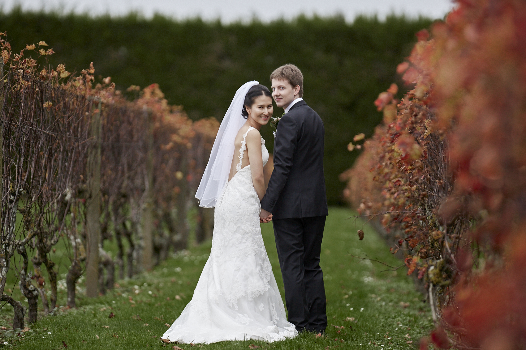 couple in a vineyard looking back