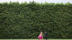 walking past hedge