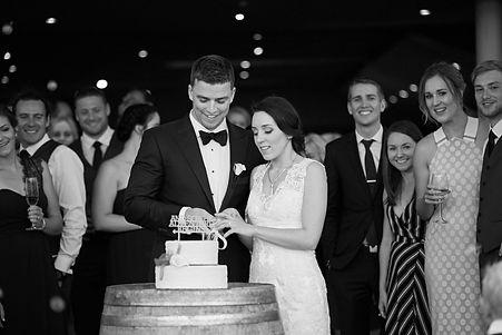 The newlyweds cutting wedding cake