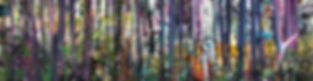 Forest header.jpg