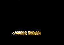 ElleeplexProfusion-Logo-Positive.png