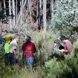Mullion SF, OFNCS members surveying (102