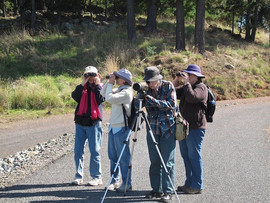 Spring Creek Bird Survey April 2011.jpg