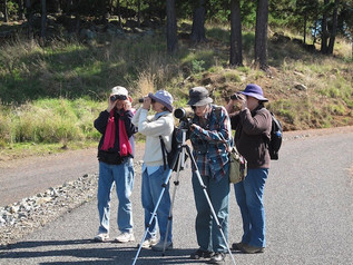 Spring Creek Bird Survey April 2011.jpg