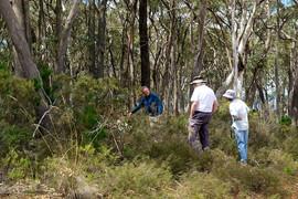 Mullion Range Flora Survey, March 2015.j